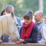 Equi-coaching : réussir avec le cheval pour guide