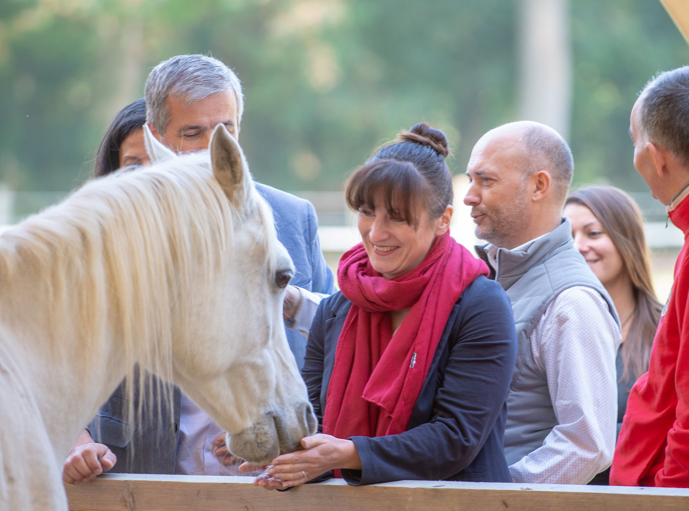 Equicoaching : réussir avec le cheval pour guide